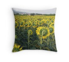 Sunflowers from backside. Throw Pillow