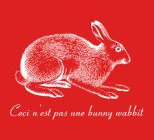 Ceci n'est pas une bunny wabbit Kids Clothes