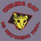 Ceiling Cat  by BUB THE ZOMBIE