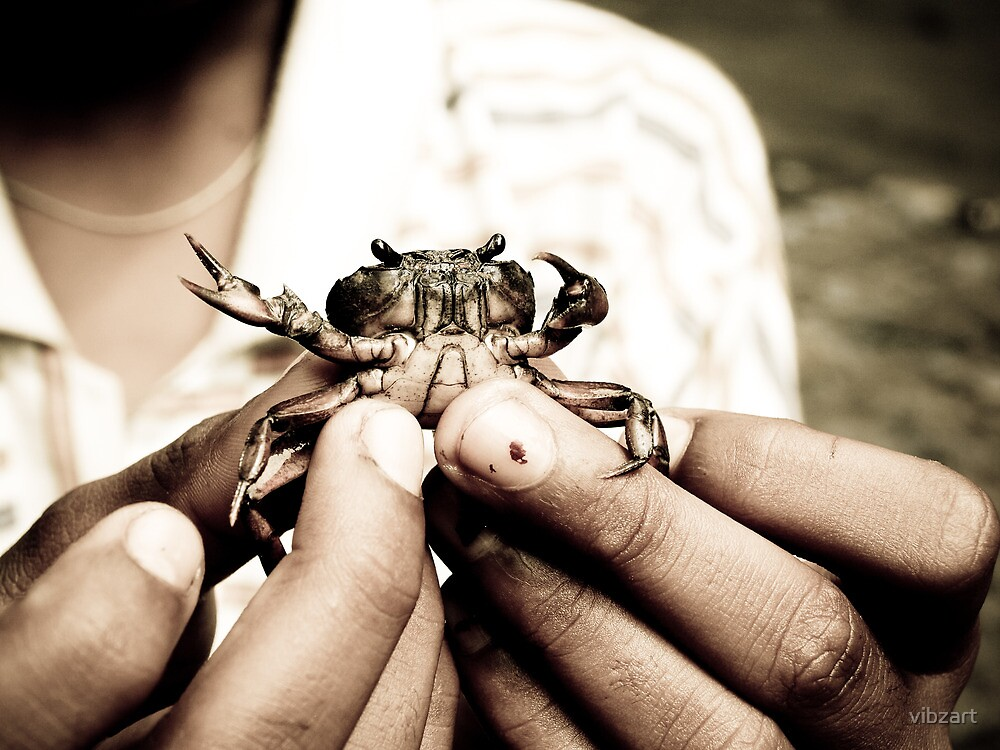 Little Crab trying to wriggle out of the hands of the village boy - in Karnataka, India by vibzart