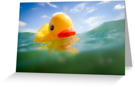 Swimming Rubber Ducky by John Hartung