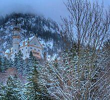 Neuschwanstein Castle In Germany by sarchuk63