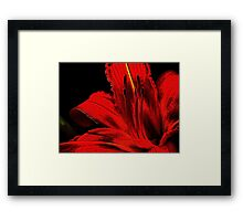 Red ! Framed Print