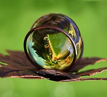 the World in the Crystal Ball by RosiLorz