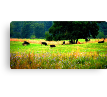 Till the Cows Come Home Canvas Print