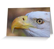 Eagle Eye Greeting Card