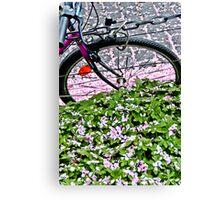 Biking through petals in Bonn Canvas Print