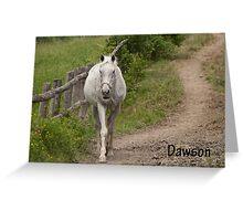 Dawson - NNEP  Ottawa, ON Greeting Card