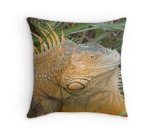 Male Iguana (Costa Rica) Throw Pillow