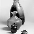 Vases and the Turtle - Series by Glenn Cecero