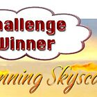 Stunning Skyscapes Challenge Winner Banner by rocamiadesign