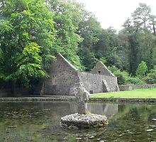 St.Patrick's Well & Church,,Nr.Clonmel & Marlfield,Co,. Tipperary,Ireland. by Pat Duggan