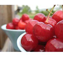 Tart Cherries in the Sun Photographic Print