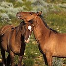 Best Buds by Kathy Cline