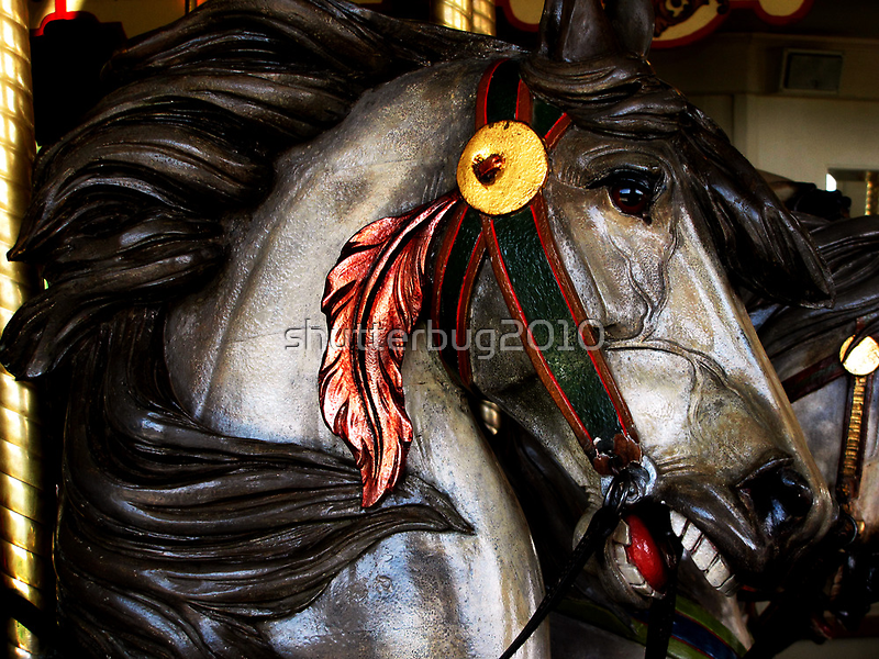 Red Feather Rides Again! by shutterbug2010