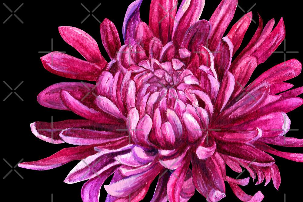 """Chrysanthemum """"the opening"""" by Sarah Trett"""
