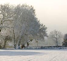 Another Winter Scene by Loren Goldenberg-Kosbab