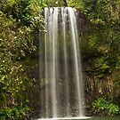 Millaa Millaa Falls by TonyCrehan