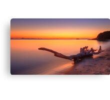Twilight Driftwood Canvas Print
