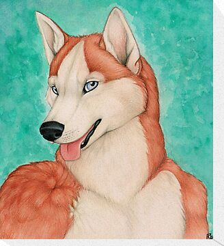 Red Husky by Sarah Thomas