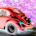 Beetle Inversion by ©The Creative Minds