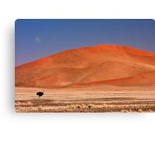 Two under a dune moon Canvas Print