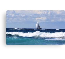 sails at kingscliff ... Canvas Print