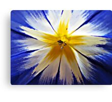 Just a little flower. Canvas Print