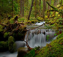 A Touch Of Heaven ~ Oregon Cascades ~ by Charles & Patricia   Harkins ~ Picture Oregon
