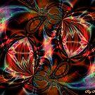 Hypnogogic Samples by Roz Rayner-Rix
