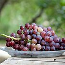Grapes for the table by Liza Kirwan