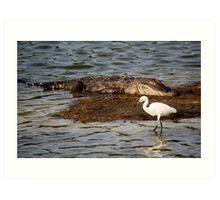 Gator and the Snowy Egret Art Print