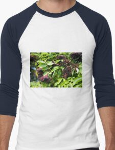 Elderberry fruits fresh clusters Men's Baseball ¾ T-Shirt