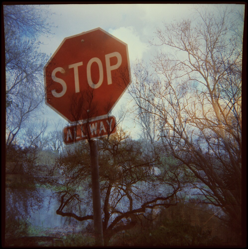 Flood Warning by Jill Auville