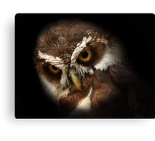 The Appearance of Wise Owl Canvas Print