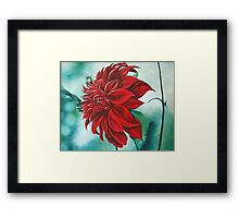 Red in Fury Framed Print