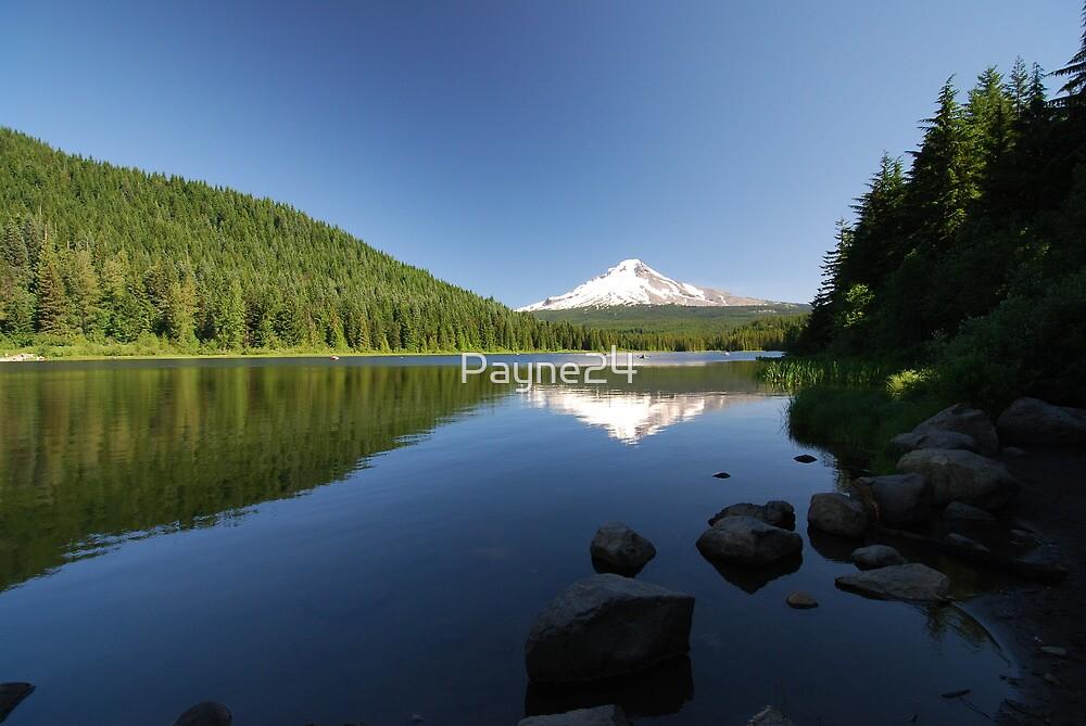 Mt. Hood Reflection by Payne24