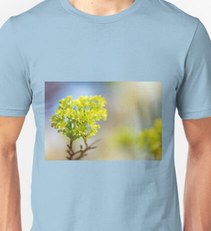 Acer blooming twig detail Unisex T-Shirt