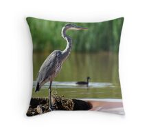waiting by the spillway Throw Pillow