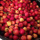 Crabby apples! by evon ski