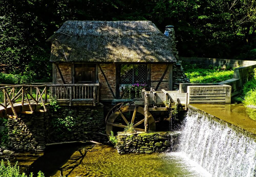 Gomez Mill House by Pamela Phelps