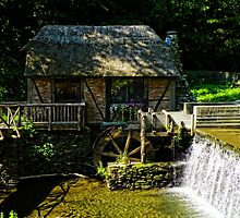 Gomez Mill House by Pamela Phelps