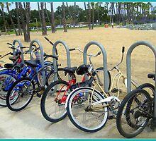 Beached Bikes by Melanie McPike