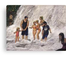 Willow River Falls Canvas Print