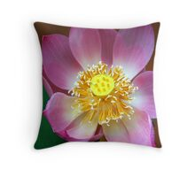 Large Lotus Flower, Thailand  Throw Pillow