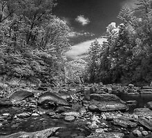 Chesterfield Gorge BW 2 by Rick Gold