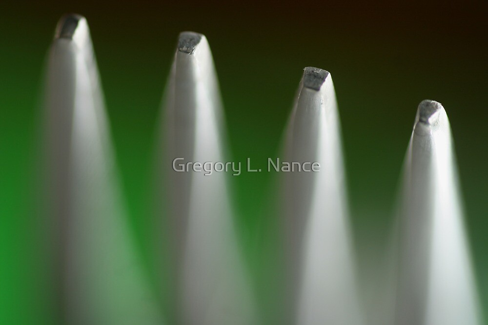Fork Tines by Gregory L. Nance