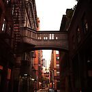 Twilight in Tribeca by Vivienne Gucwa