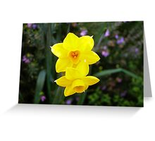 'JUST THE TWO OF US!' Jonquils Soleil d'or. Greeting Card