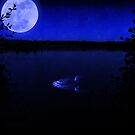 Loon Swimming by Moonlight by Megan Noble